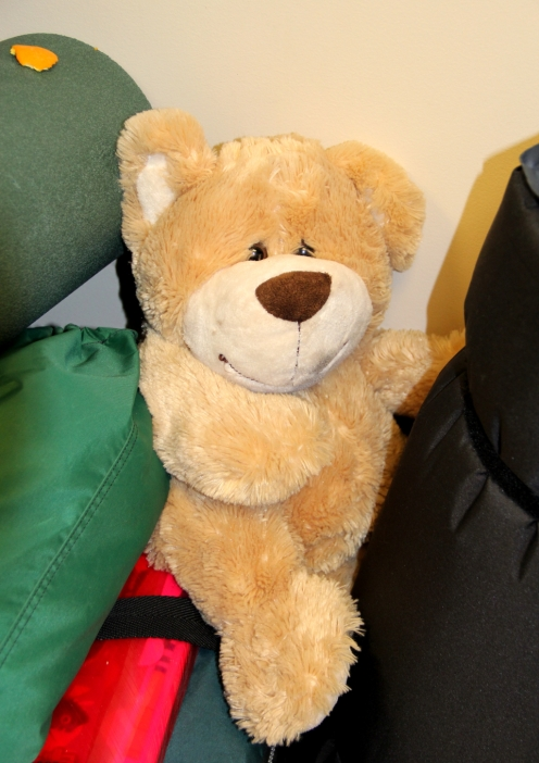 teddy bear at junior road cycling camp