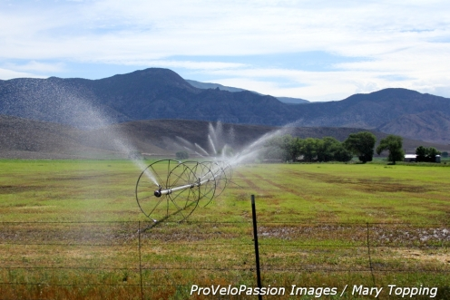Irrigation along Highway 89 near Panguitch, Utah